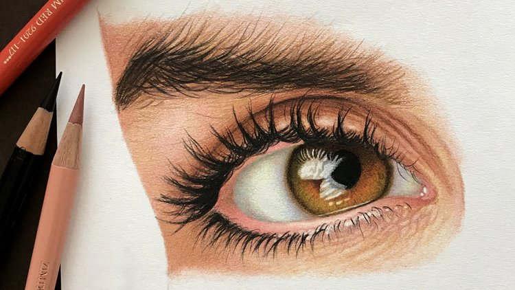 The Colored Pencil Drawing Techniques Course Ayden Premium Courses Online